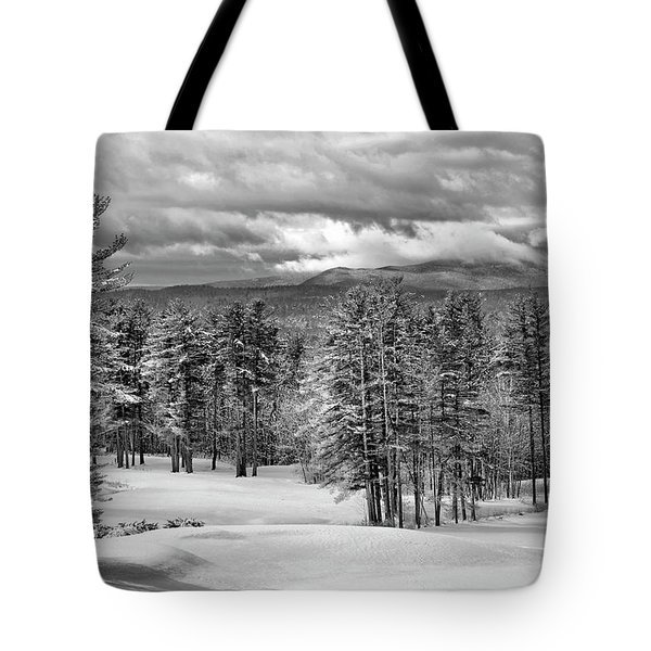 After The Snow  Tote Bag