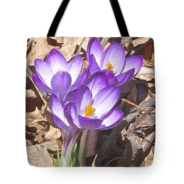 After The Snow Has Gone Tote Bag