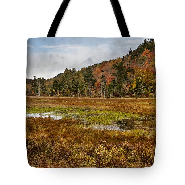 After The Storm  Tote Bag by Betty  Pauwels
