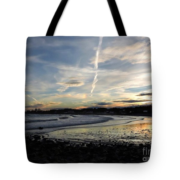 After The Storm In 2016 Tote Bag