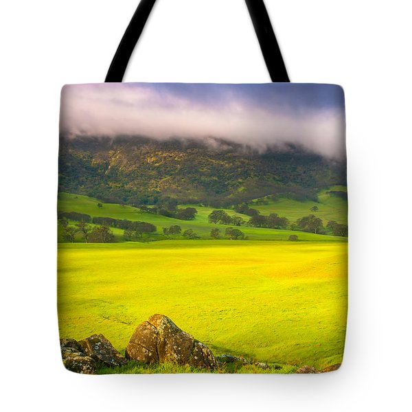After The Storm Tote Bag by Marc Crumpler