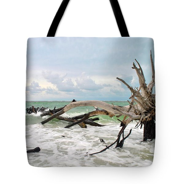 After The Storm Tote Bag by Margie Amberge