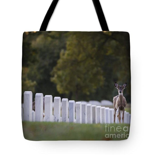 After Visiting Hours Tote Bag by Andrea Silies