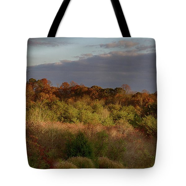 Afternoon Glow In Hocking Hills Tote Bag