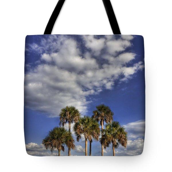 Afternoon High Tote Bag