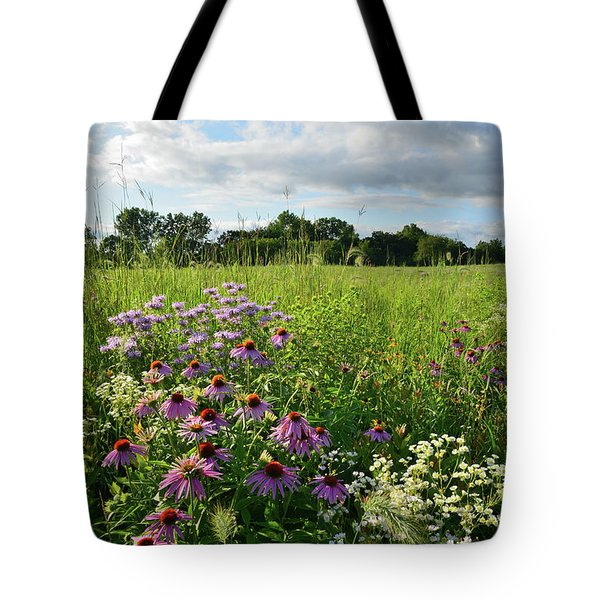 Afternoon In Moraine Hills State Park Tote Bag