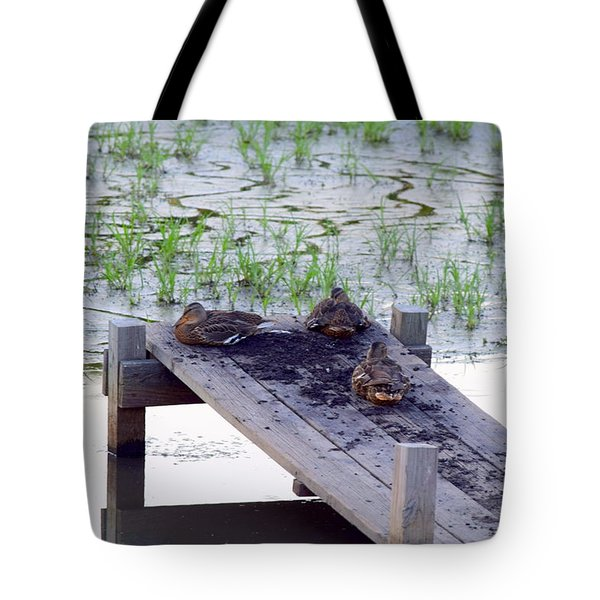 Tote Bag featuring the photograph Afternoon Rest by Deborah  Crew-Johnson