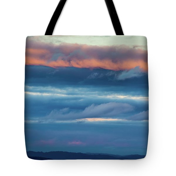 Afternoon Sandwich Tote Bag