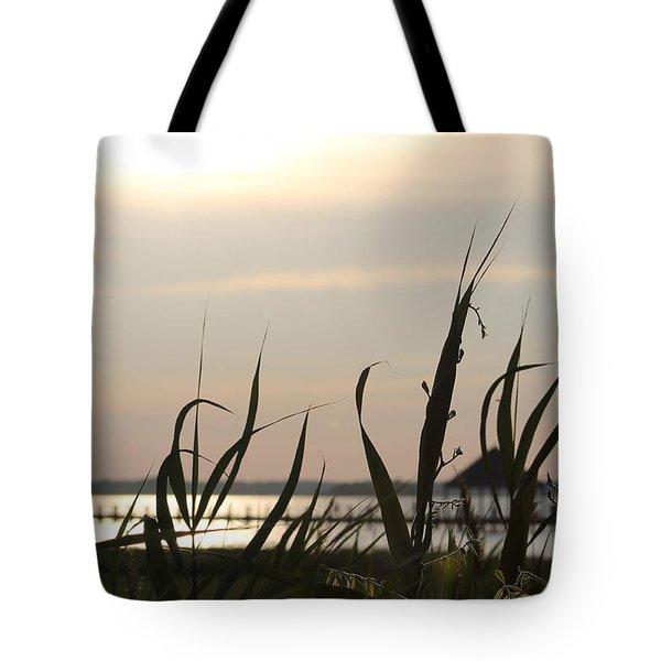Afternoon Sun Tote Bag by Robert Banach