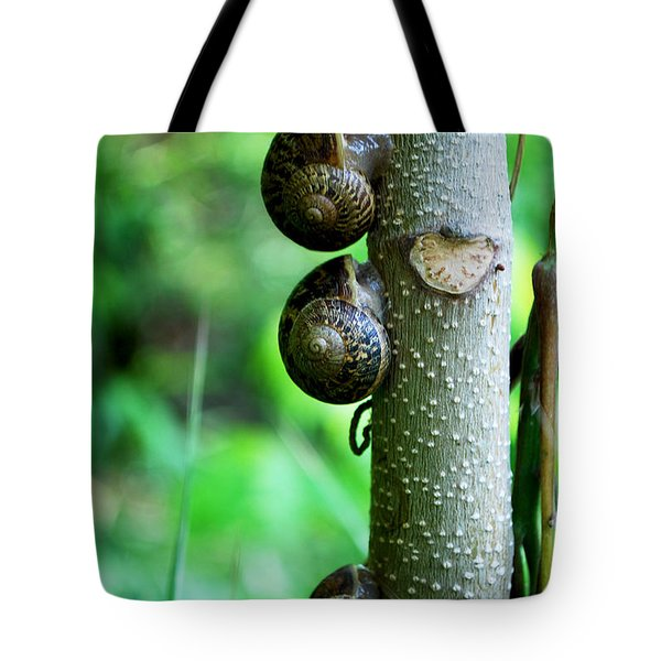 #aftertheyhavereignedtheywillrest Tote Bag by Becky Furgason