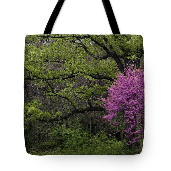 Afton Virginia Spring Red Bud Tote Bag by Kevin Blackburn