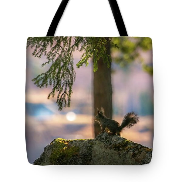 Against Brighter Times Tote Bag