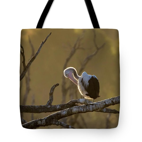 Against The Light Tote Bag