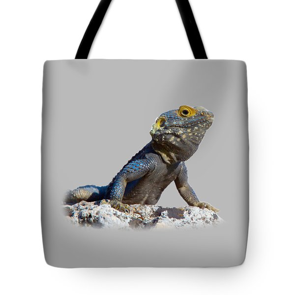 Agama Basking On A Rock T-shirt Tote Bag