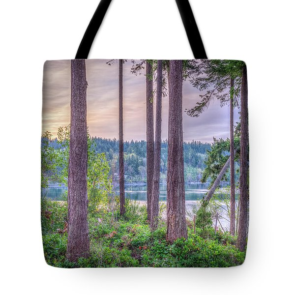 Agate Passage View Tote Bag