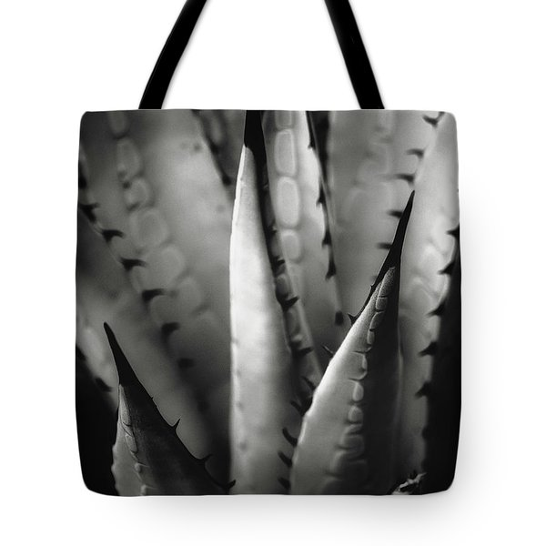 Agave And Patterns Tote Bag by Eduard Moldoveanu