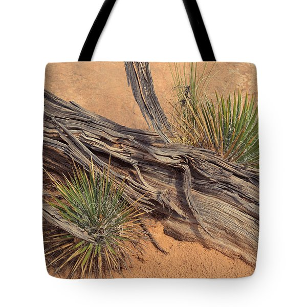 Agave And Weathered Branch Tote Bag