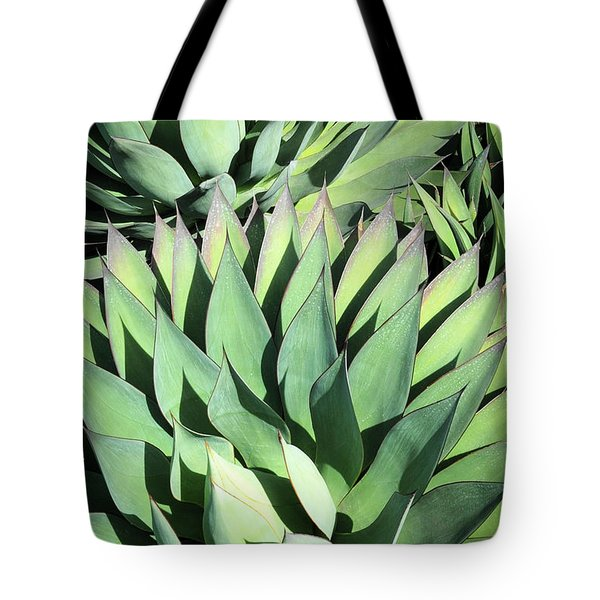 Tote Bag featuring the photograph Agave by Catherine Lau
