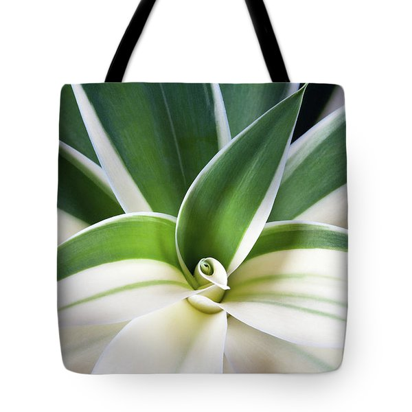 Tote Bag featuring the photograph Agave Ray Of Light by Catherine Lau