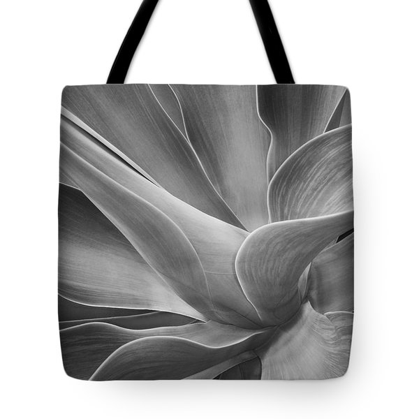 Agave Shadows And Light Tote Bag