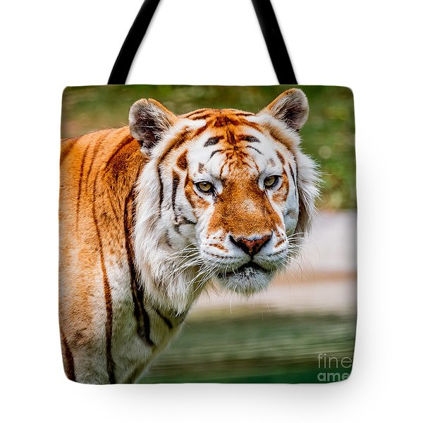 Aging Tiger Tote Bag