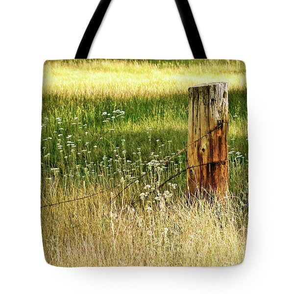 Aglow Tote Bag by Melanie Alexandra Price