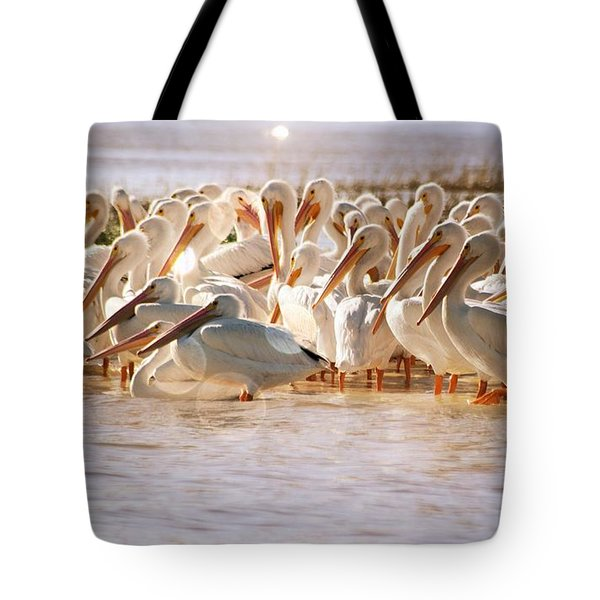 Aglow White Pelicans Tote Bag
