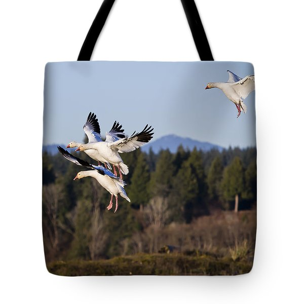 Tote Bag featuring the photograph Air Acrobatics by Windy Corduroy