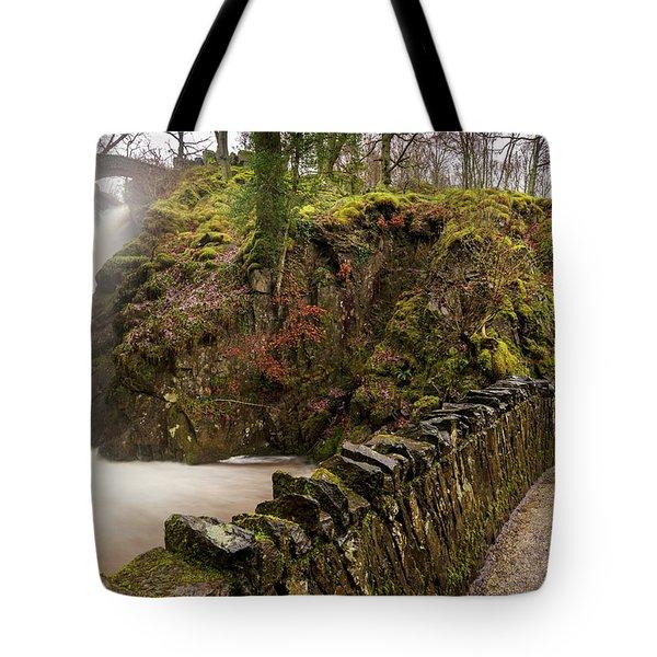 Aira Force Lower Stone Bridge Tote Bag