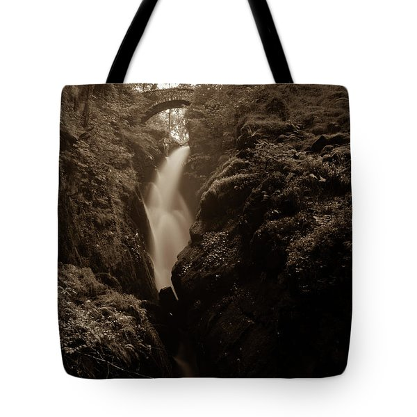 Aira Force - Sepia Tote Bag