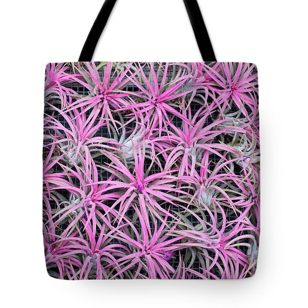 Tote Bag featuring the photograph Airplants by Tim Gainey