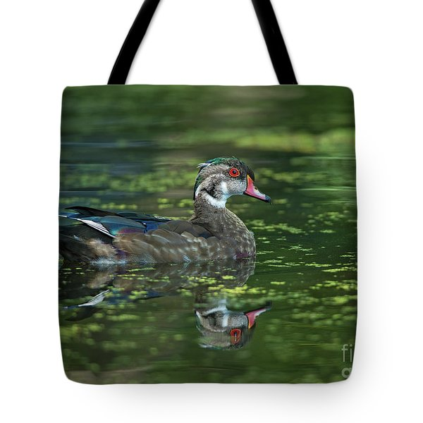 Tote Bag featuring the photograph Aix Sponsa.. by Nina Stavlund