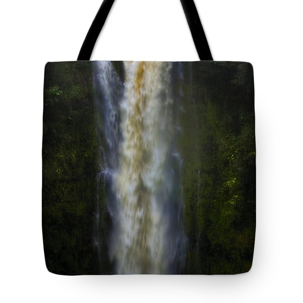 Tote Bag featuring the photograph Akaka Falls by Ellen Heaverlo
