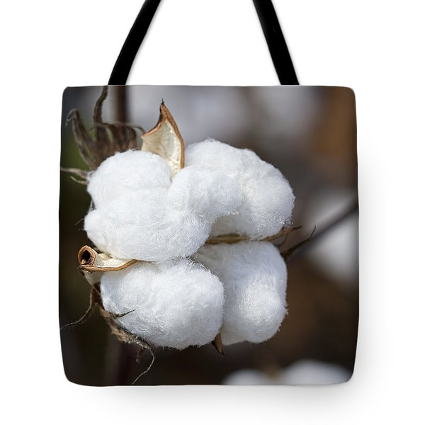 Alabama Cotton Boll Tote Bag