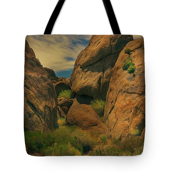 Alabama Hills - Eastern Sierras - Two Tote Bag