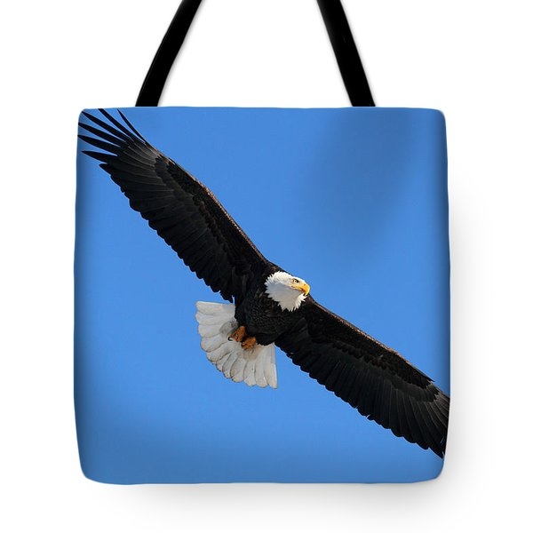 Alaska Bald Eagle Tote Bag