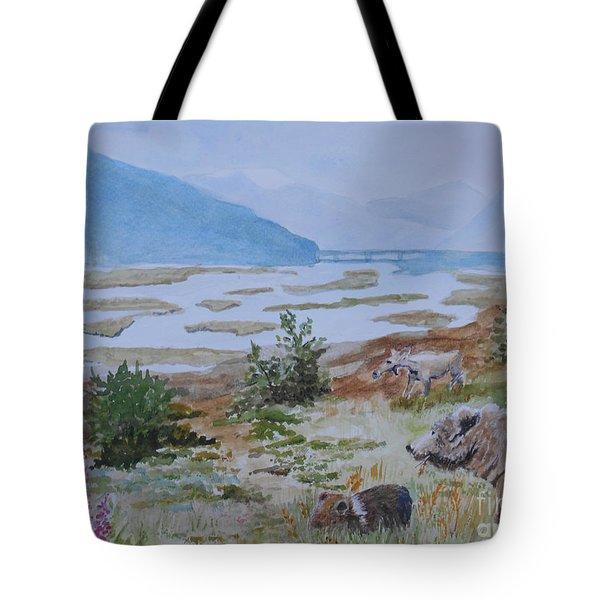 Alaska - Denali 2 Tote Bag