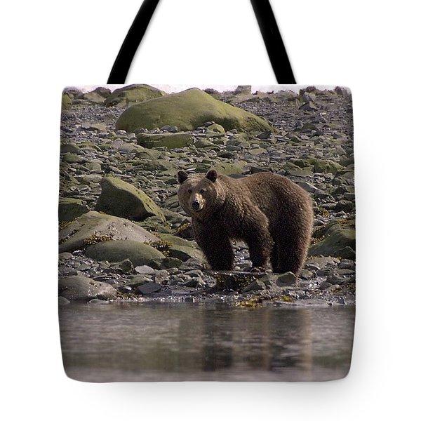 Alaskan Brown Bear Dining On Mollusks Tote Bag