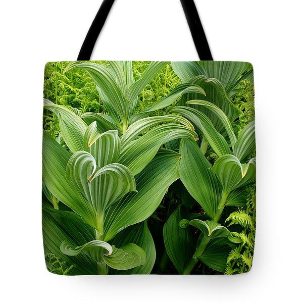 Alaskan Field Foliage Tote Bag