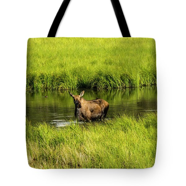Alaskan Moose Tote Bag