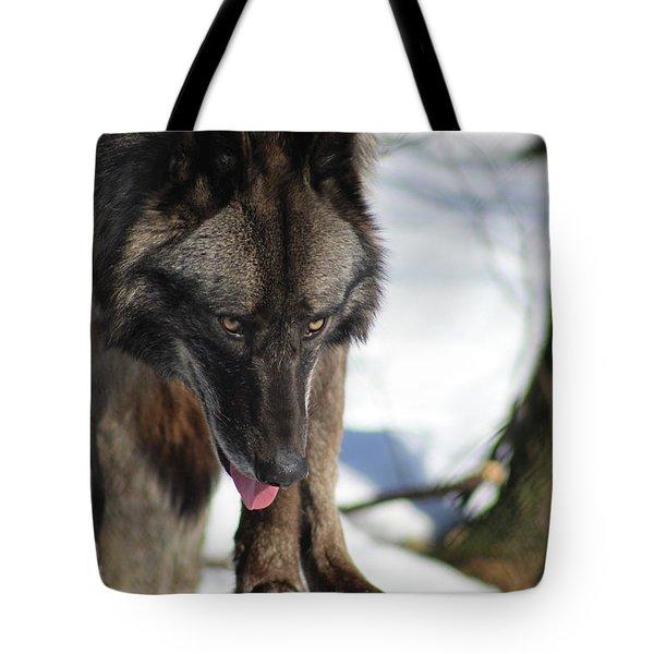 Alaskan Tundra Wolf Tote Bag