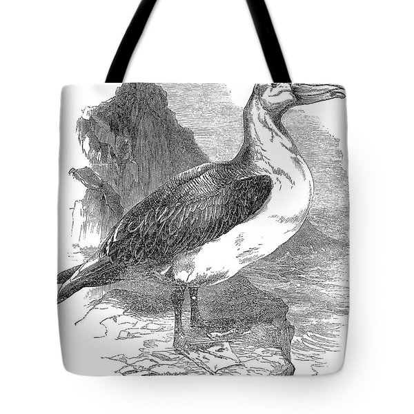 Albatross Tote Bag by Granger