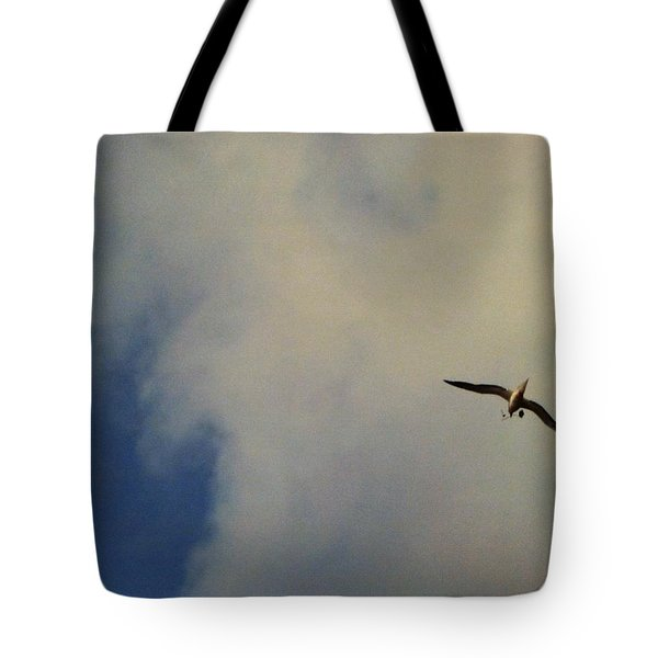 Tote Bag featuring the photograph Albatross In Flight by Alohi Fujimoto