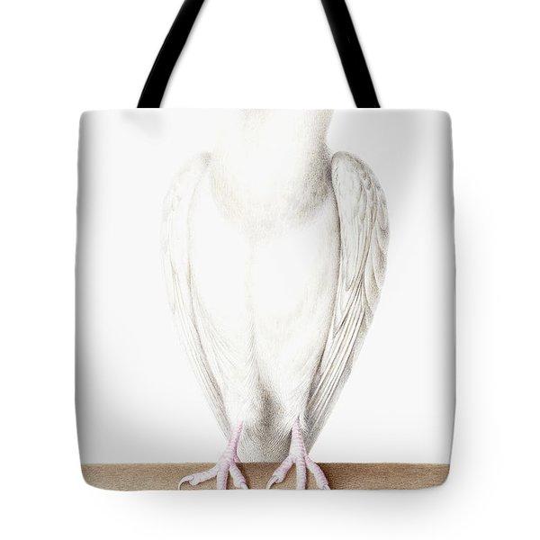 Albino Crow Tote Bag by Nicolas Robert
