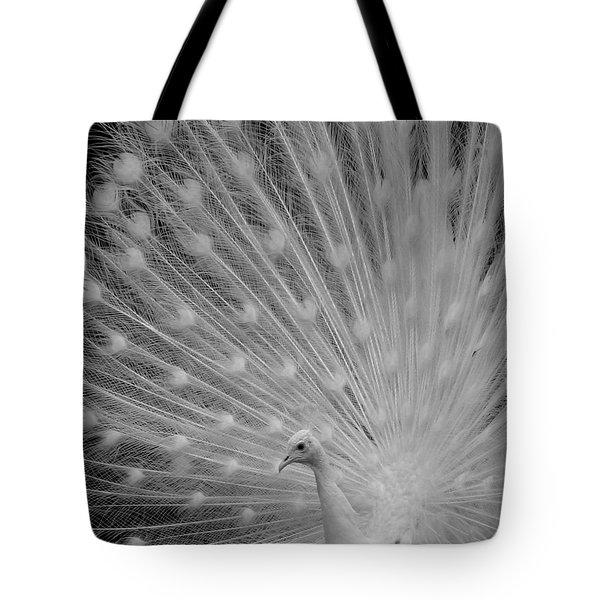 Albino Peacock In Black And White Tote Bag