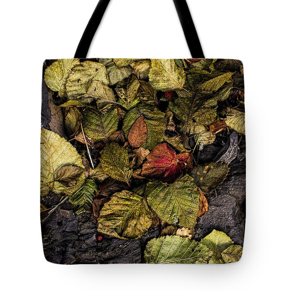 Alder Leaves Dan Creek 2015 Tote Bag
