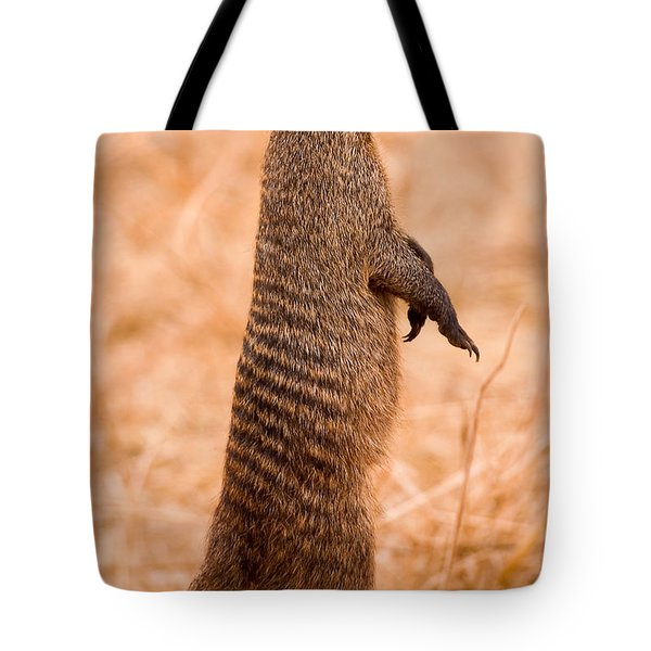 Alert Mongoose Tote Bag by Adam Romanowicz