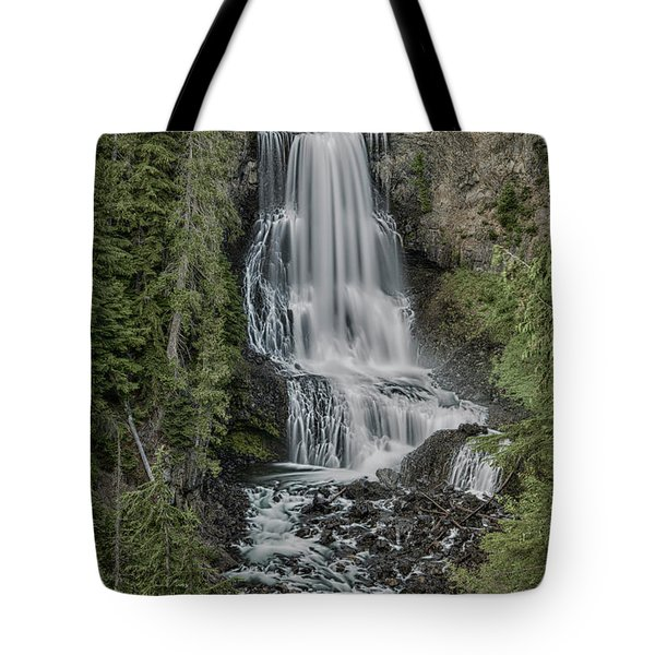 Tote Bag featuring the photograph Alexander Falls by Stephen Stookey