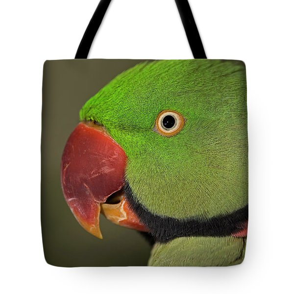 Tote Bag featuring the photograph Alexandrine Parakeet by JT Lewis