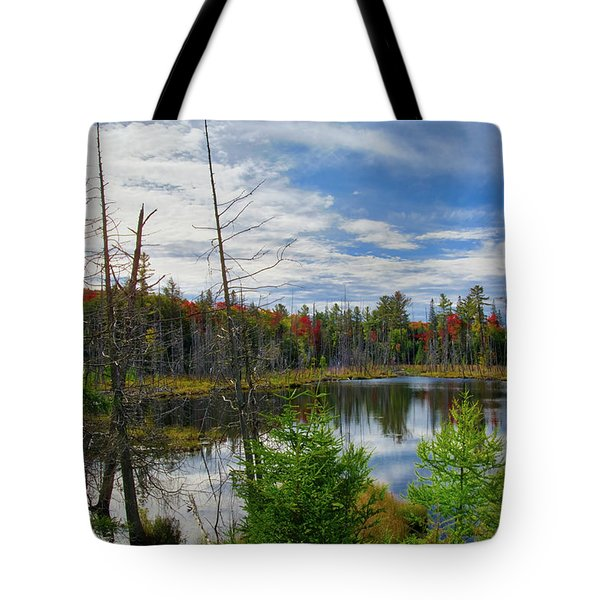 Algonquin In Autumn Tote Bag by Irwin Seidman